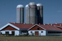 Madelia Insurance Center providing farm, crop and damage insurance.